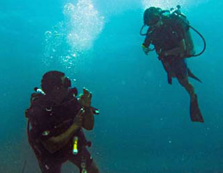 divemaster training placencia belize