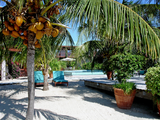 luxury beach front resort placencia belize