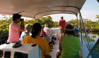 placencia river tours