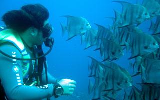 adventure scuba dive placencia belize
