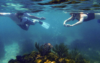 placencia-snorkelling-trips-belize-coral-reefs.jpg