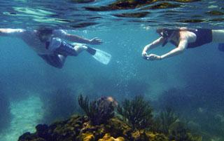 placencia-snorkelling-trips-belize-coral-reefs.jpg