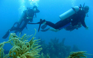scuba-review-placencia-beli.jpg