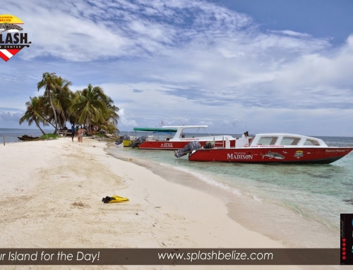 Time to Visit Nearly Covid-19 free Belize