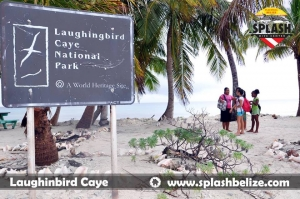 SDC Laughing Bird Caye